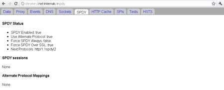 Google Chrome chrome://net-internals